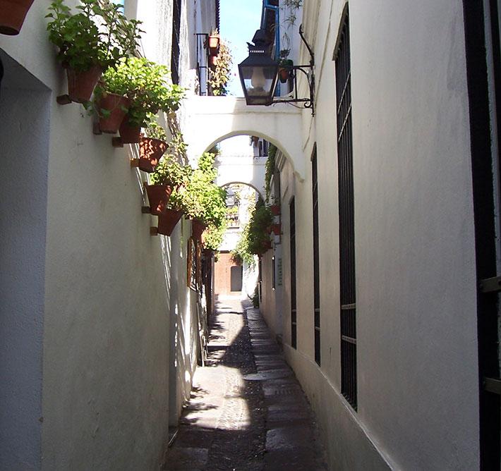 DMC Córdoba & Andalusia (Spain)