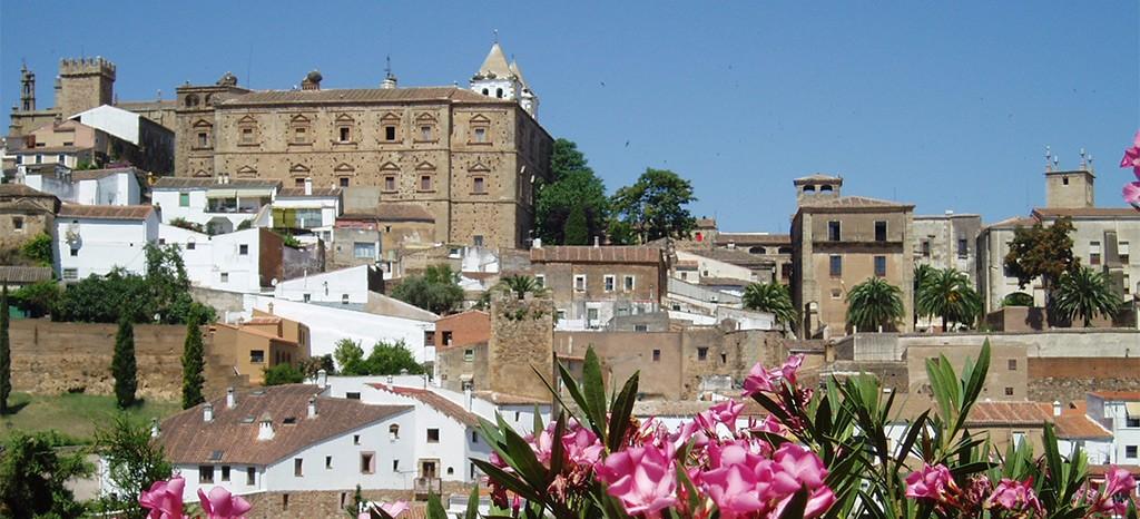 DMC Extremadura (Spain)