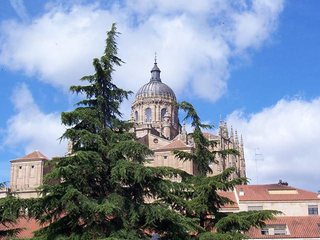 Salamanca- Catedral