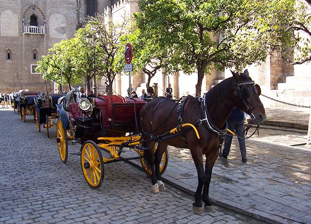 Sevilla-Kutsche