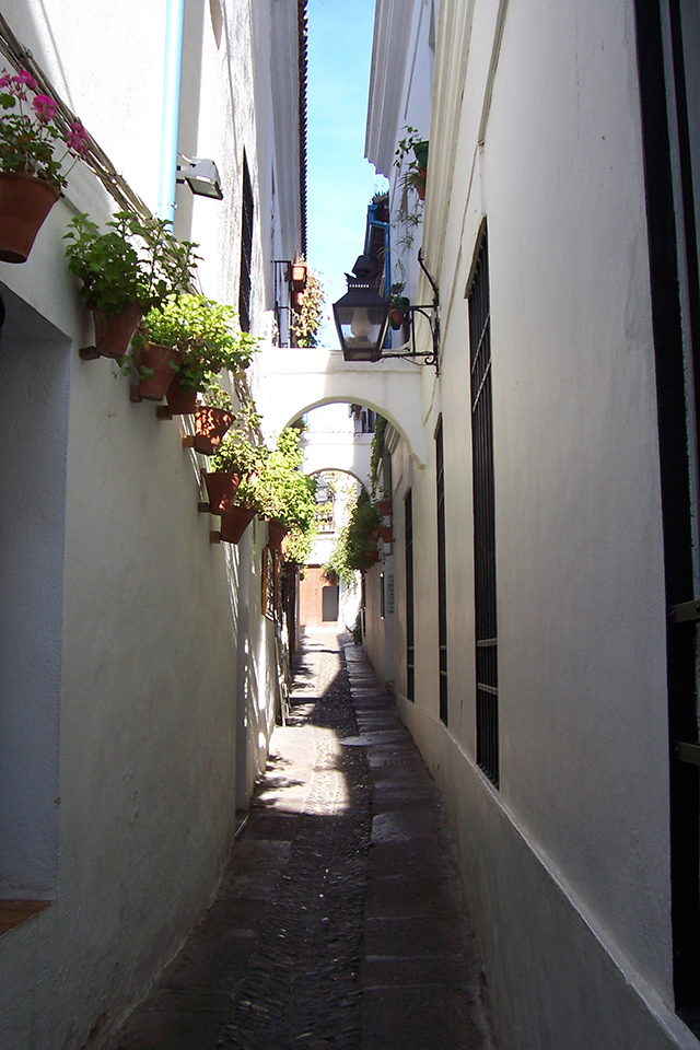 Cordoba- Callejon de Flores - baja res